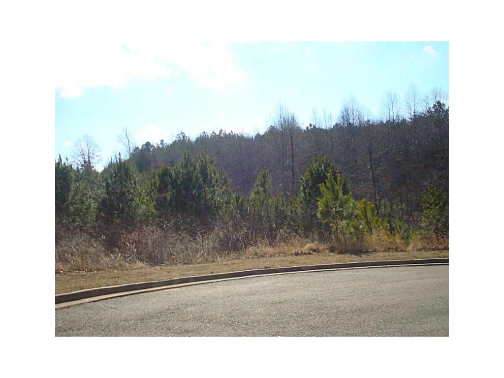 Lot 54 Village Creek Drive, Jasper, GA 30143