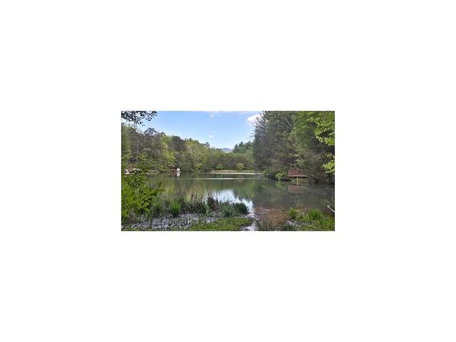 Lot 62 Cherry Lake Court, Cherry Log, GA 30522