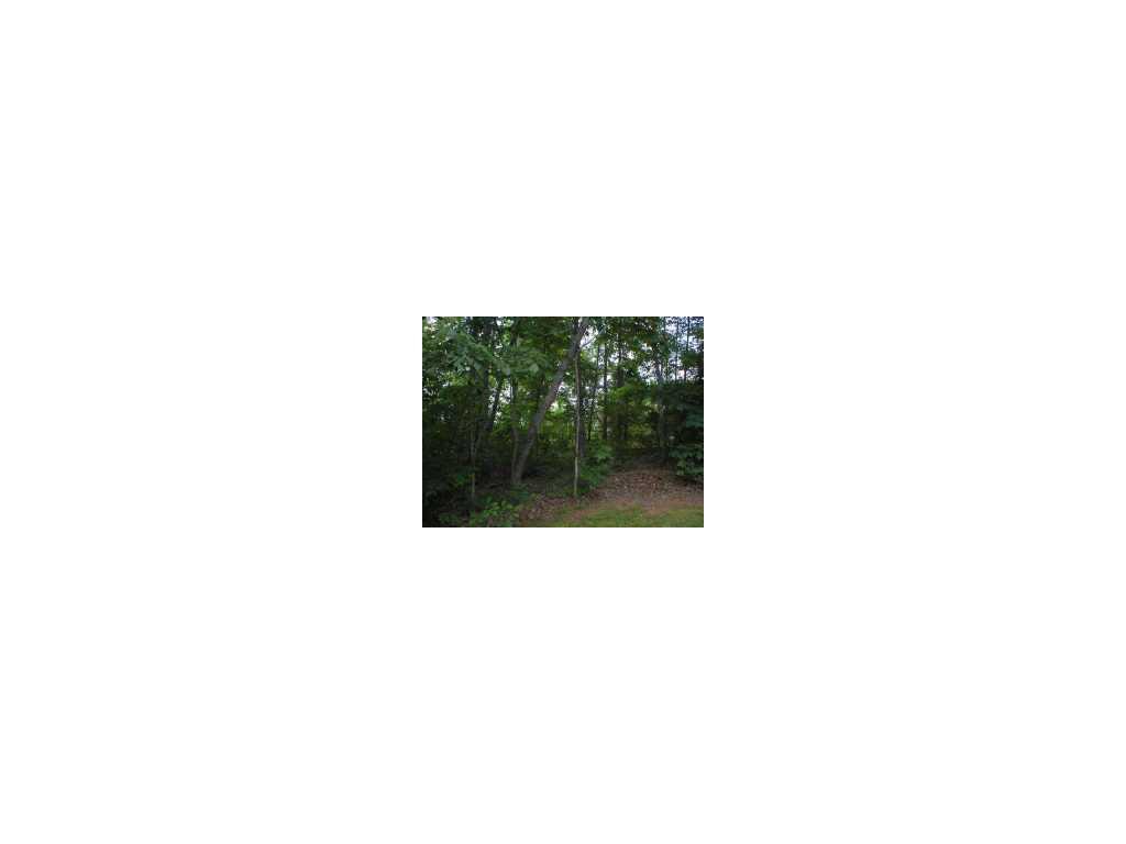 4226 Belvedere Dr, Gainesville, GA 30506