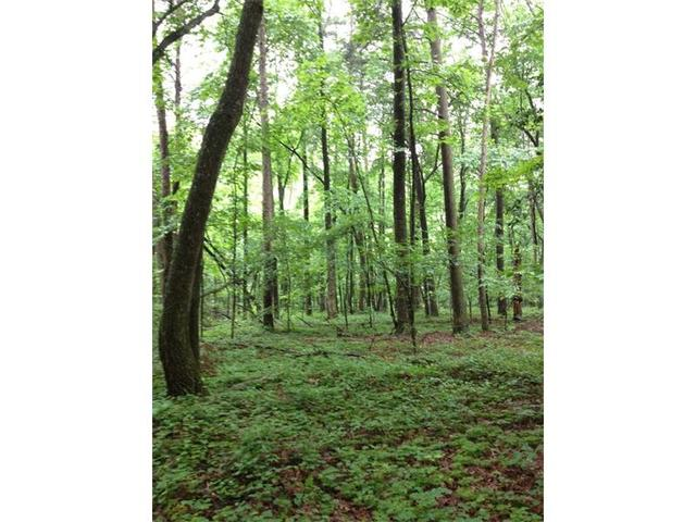 29 18 Acres-sweetwater Juno Rd, Dawsonville, GA 30534