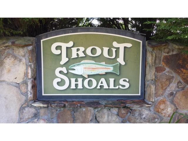 00 Trout Shoals Rd, Dawsonville, GA 30534