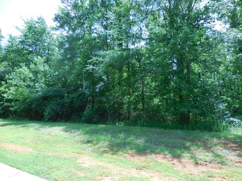 2159 Saddle Creek Drive, Jefferson, GA 30549