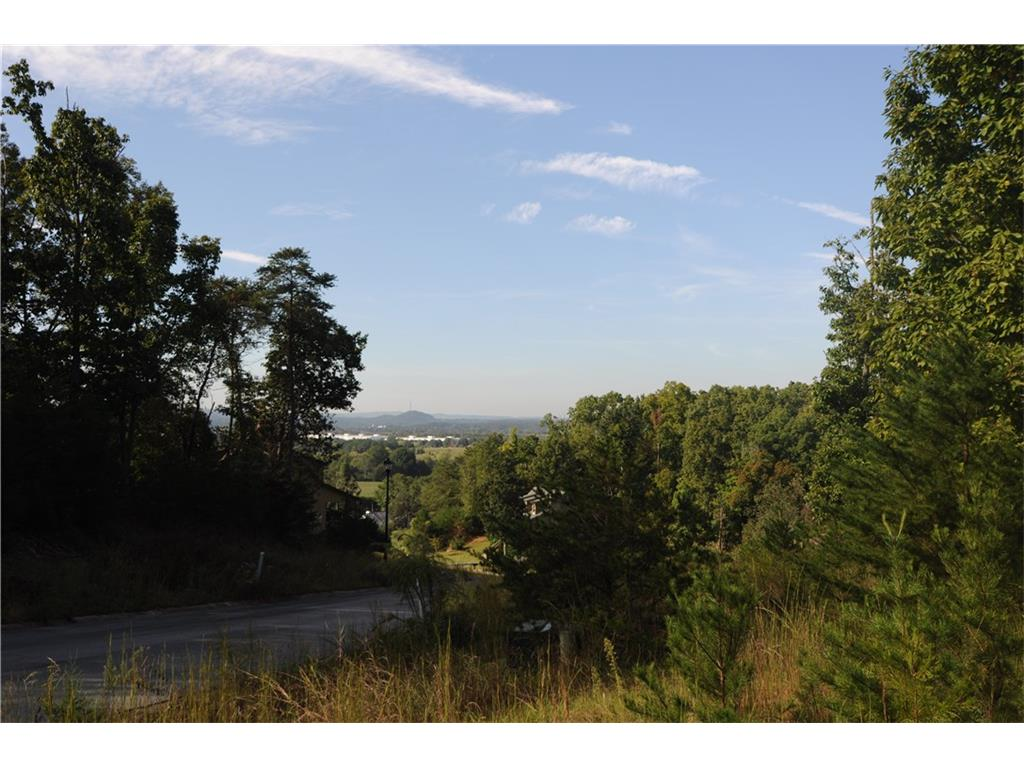 Lot 20 Caseys Ridge Road, Rockmart, GA 30153