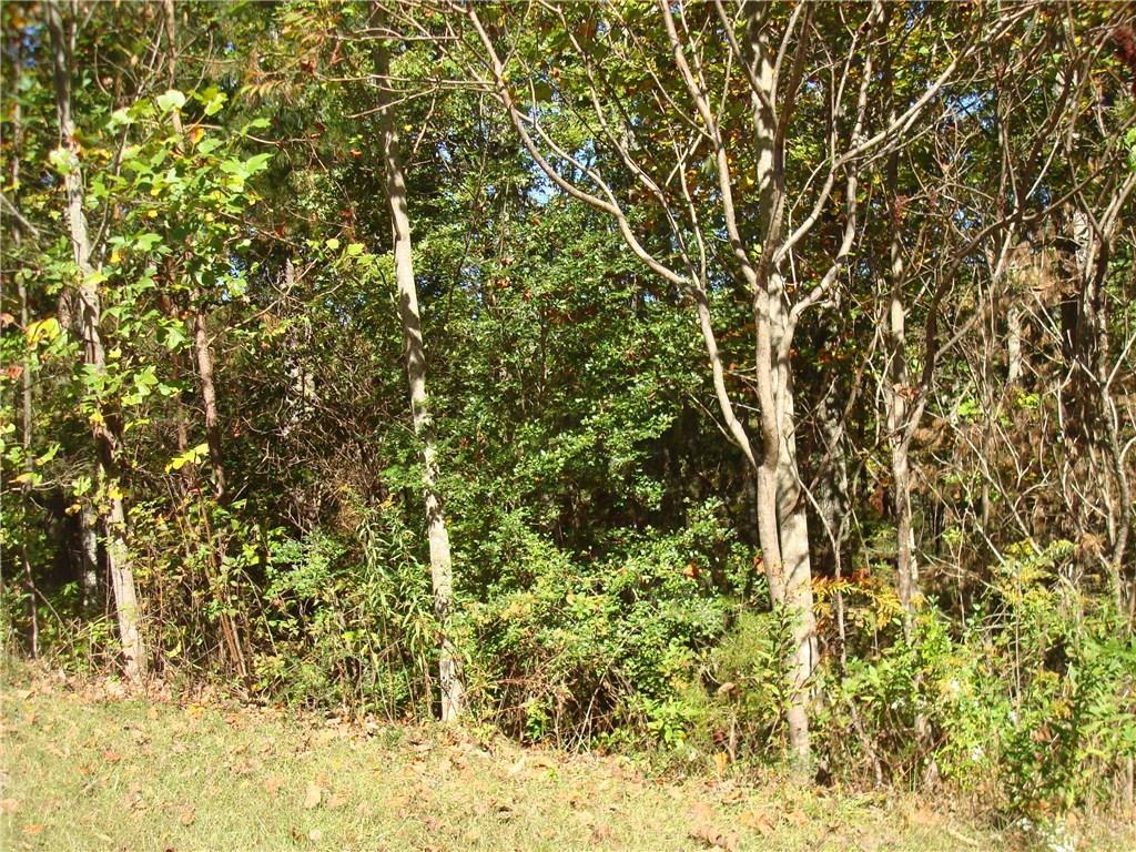 326 Black Knob Falls Drive, Ranger, GA 30734