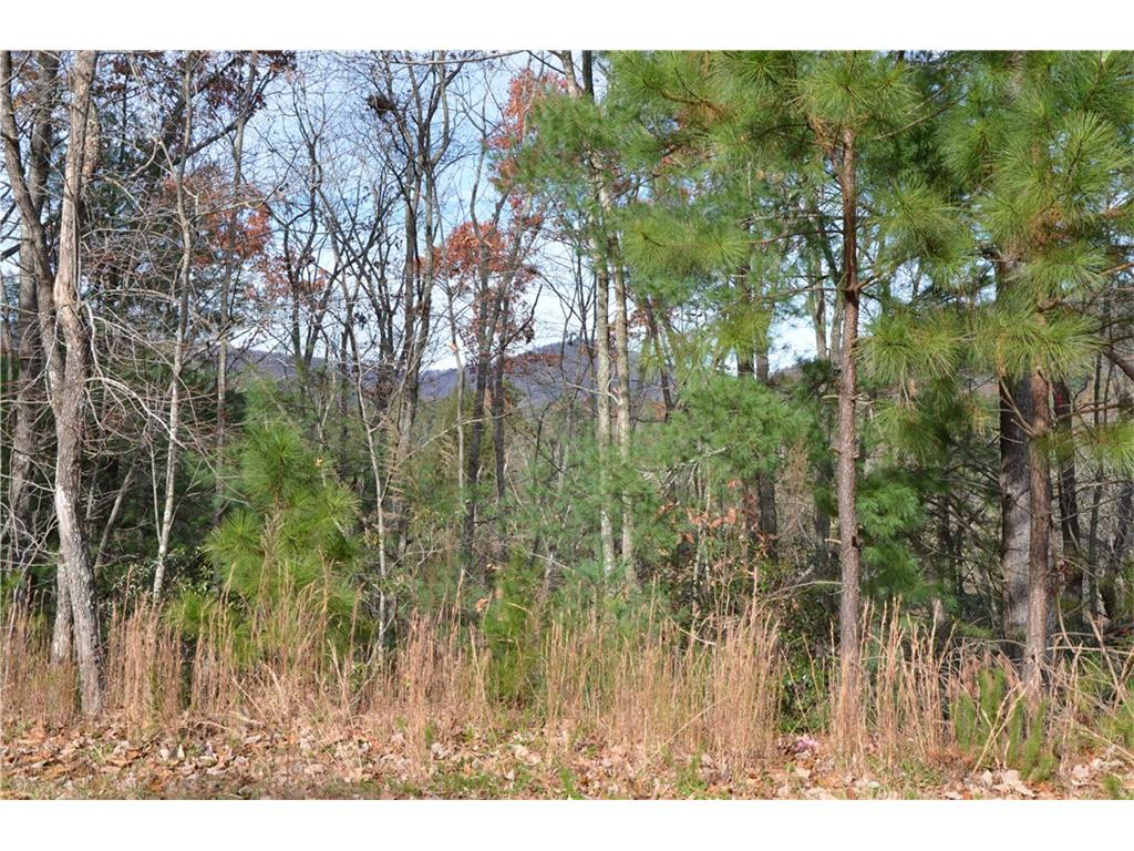 850 Sinti Trail, Big Canoe, GA 30143