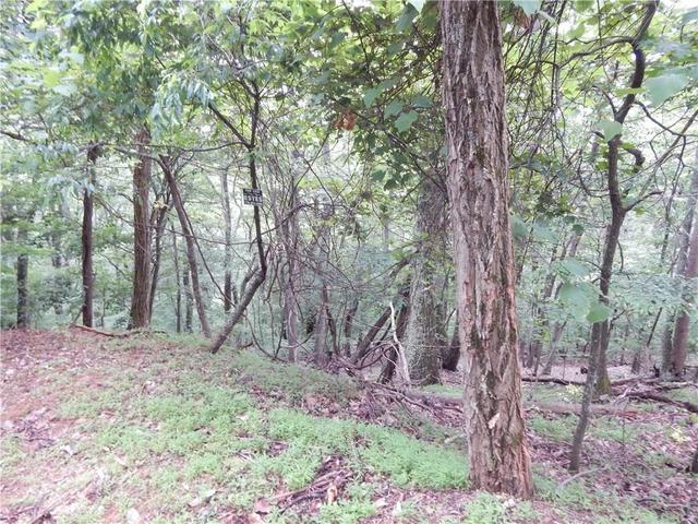 3325 Frost Pine Cir, Jasper, GA 30143