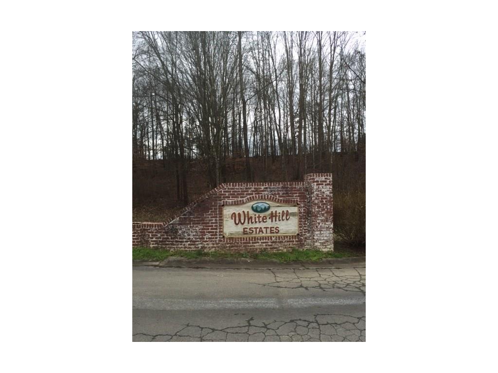 2 White Hill Drive Northwest, Calhoun, GA 30701