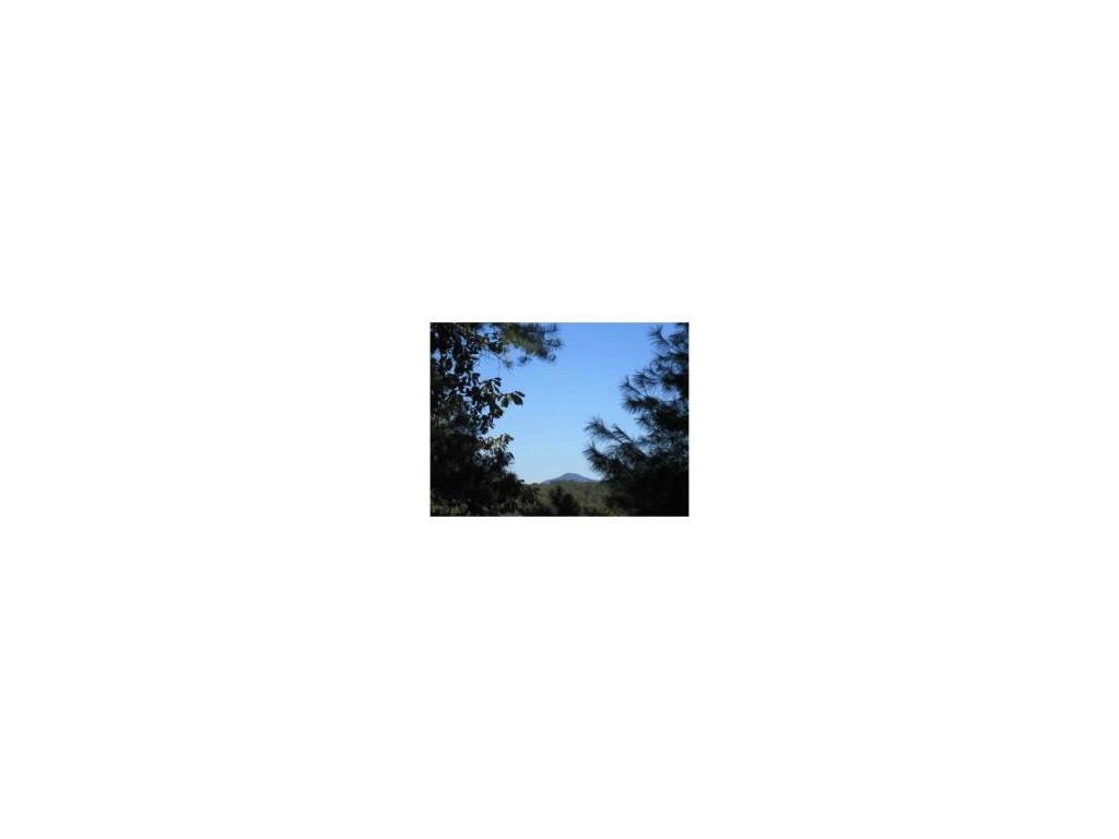 1001 Bear Paw Ridge, Dahlonega, GA 30533