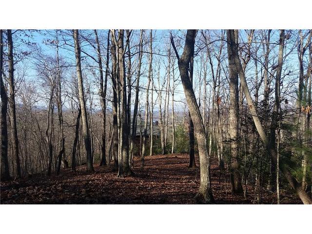 Lot 8c Spring Lake Drive, Blairsville, GA 30512