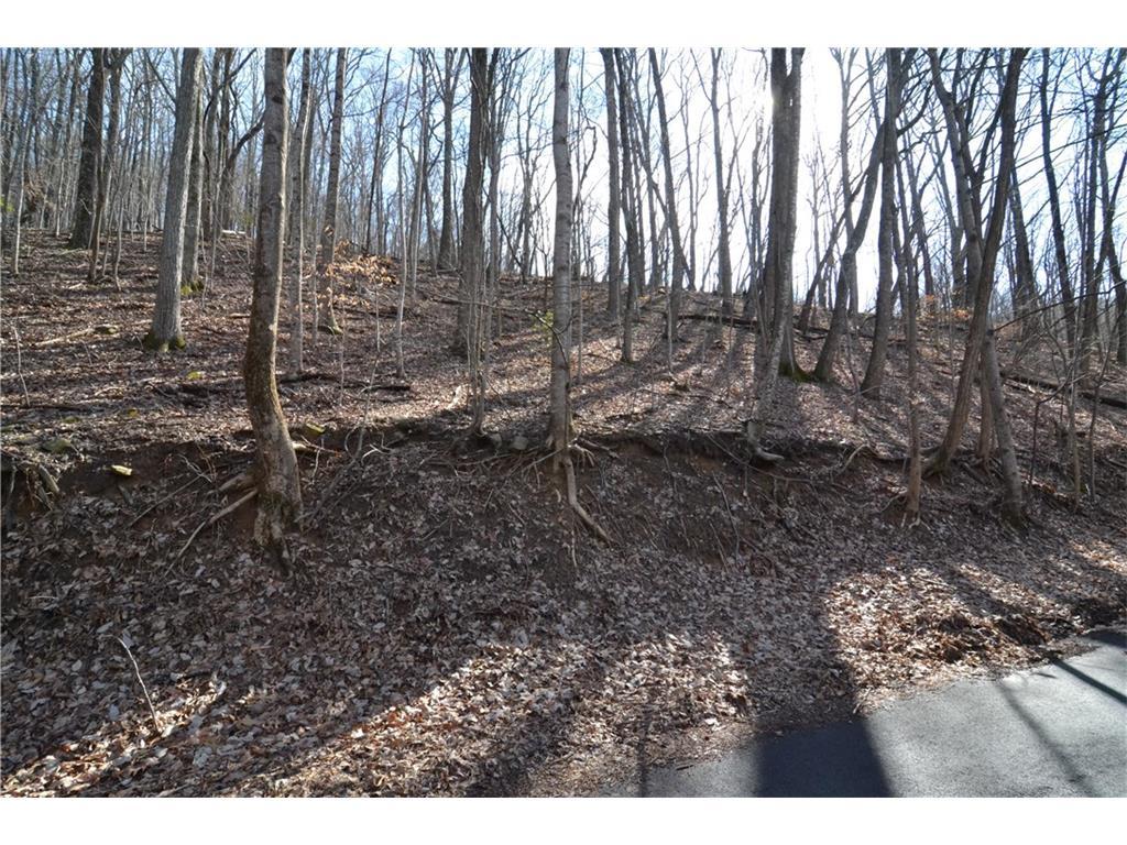 3366 Crippled Oak Trail, Jasper, GA 30143