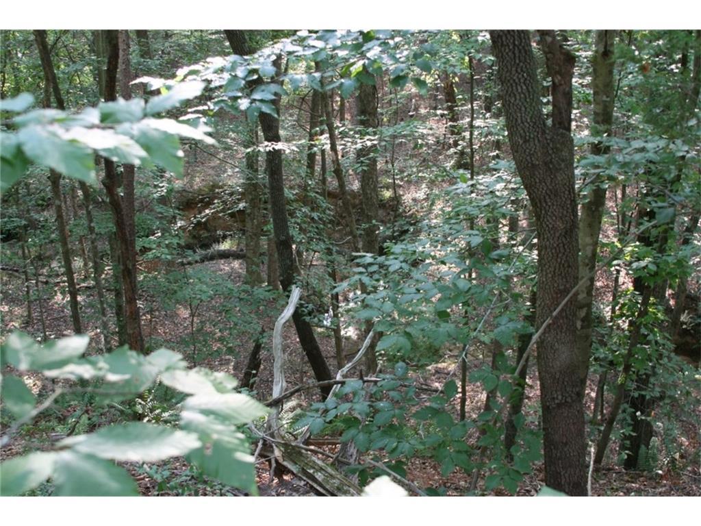 0 Raccoon Trail, Elberton, GA 30635