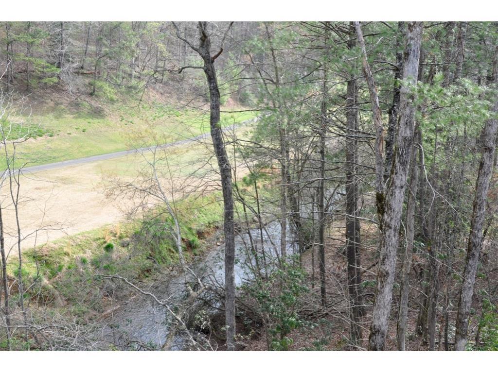 185 Twin Creeks Drive, Big Canoe, GA 30143