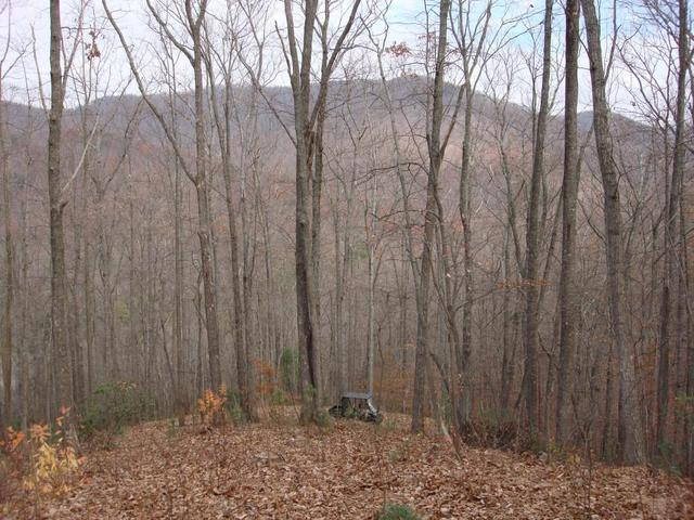 Lt 18 Wilderness Way, Ellijay, GA 30540