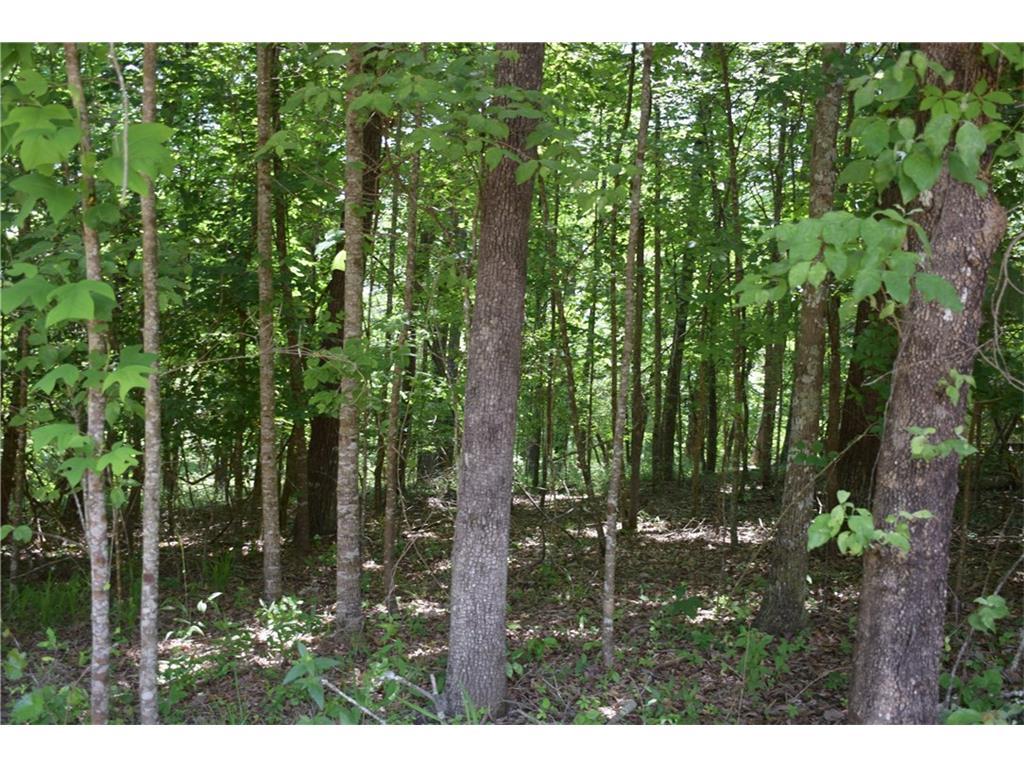 A Woody Tucker Road, Dawsonville, GA 30534