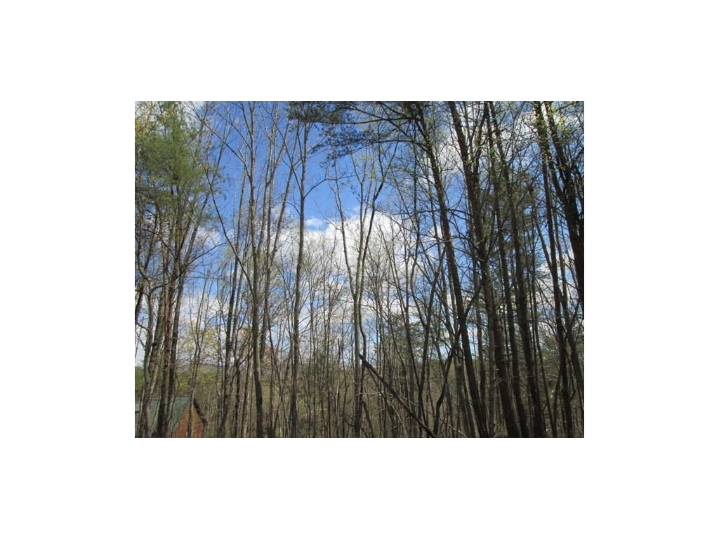 Lot 1 Black Mountain Road, Dahlonega, GA 30533