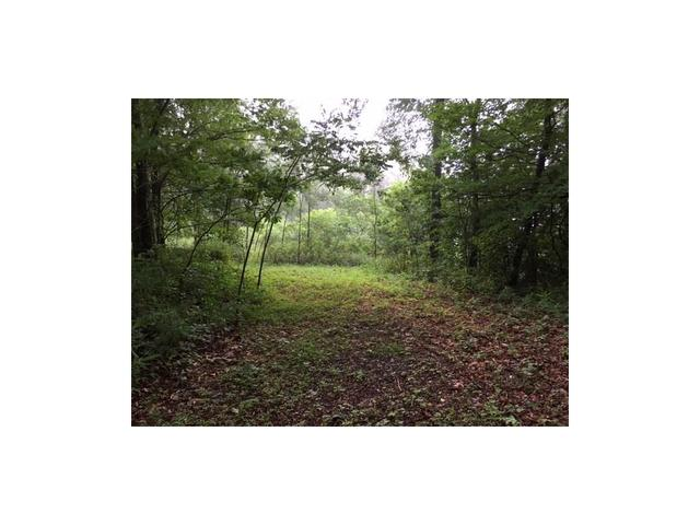 Lot 9 Lower Sassafras Mountain Parkway, Jasper, GA 30143