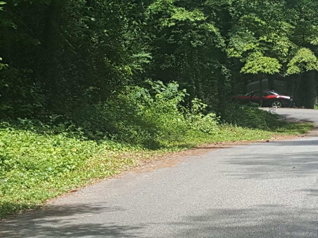 205 Indian Oak Drive, Waleska, GA 30183