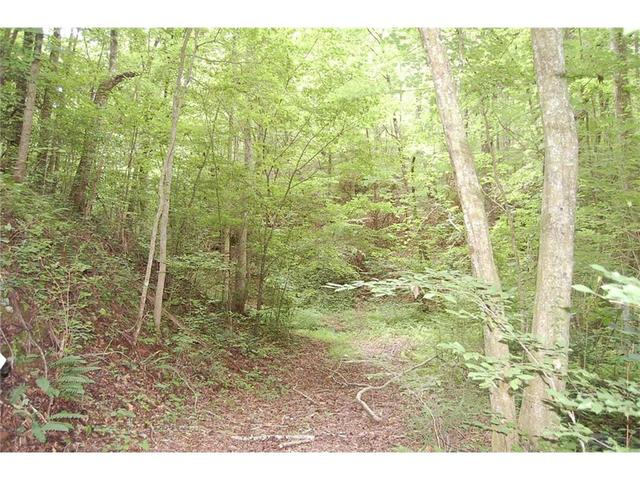 Lot 5 Back Pine Way, Ellijay, GA 30536