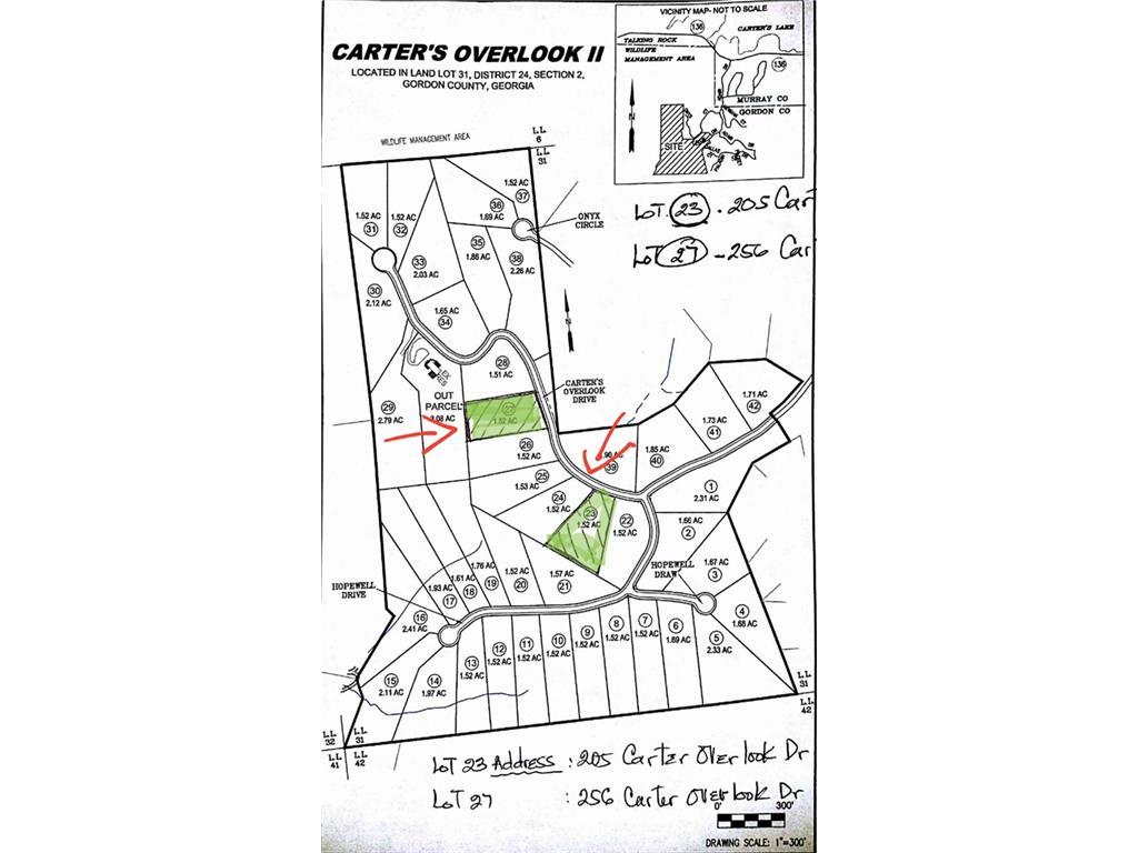 256 Carters Overlook Drive, Ranger, GA 30734