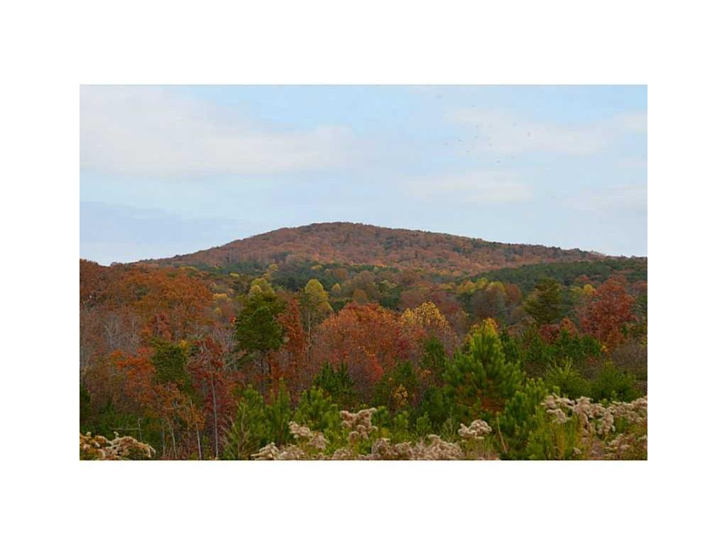 122 Canyon Ridge Trail, Canton, GA 30114