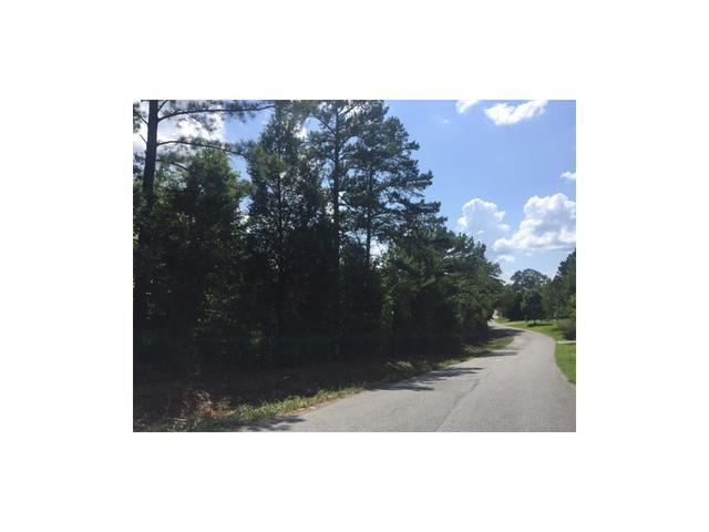 0000 Young Rd SW, Cartersville, GA 30120