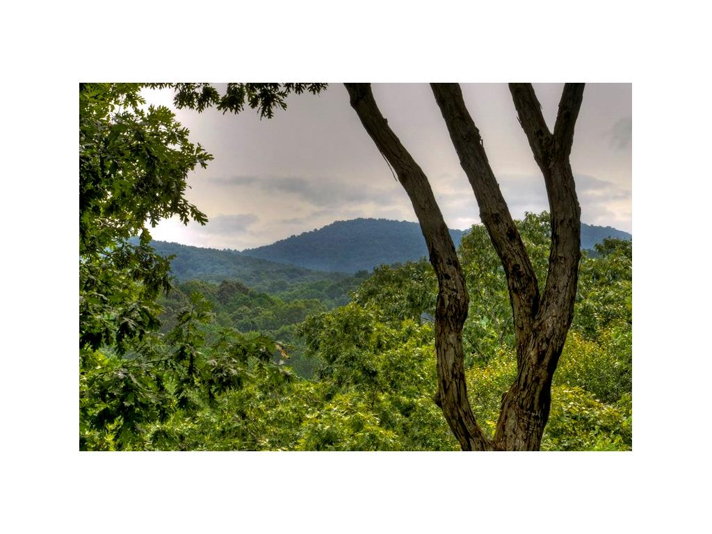 56 Coffee Mill Run, Talking Rock, GA 30175