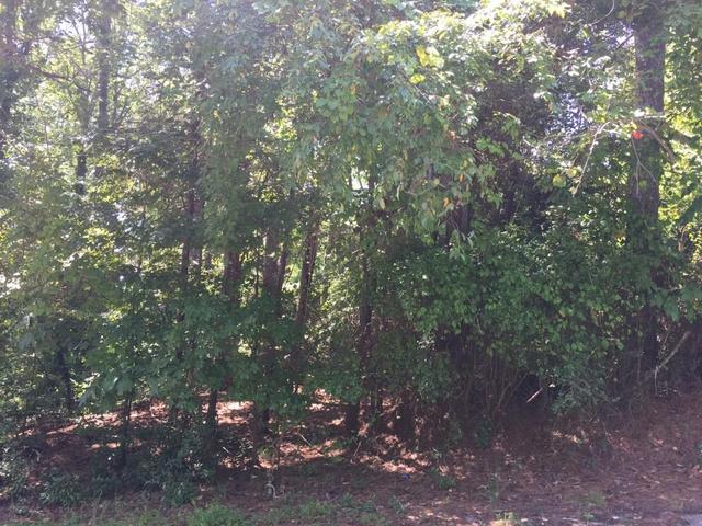 Lot 21 Pine Forest Circle, Gainesville, GA 30504