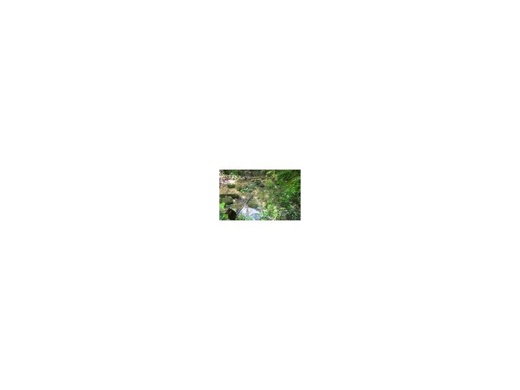0 Odum Chumbley Rd, Dawsonville, GA 30534