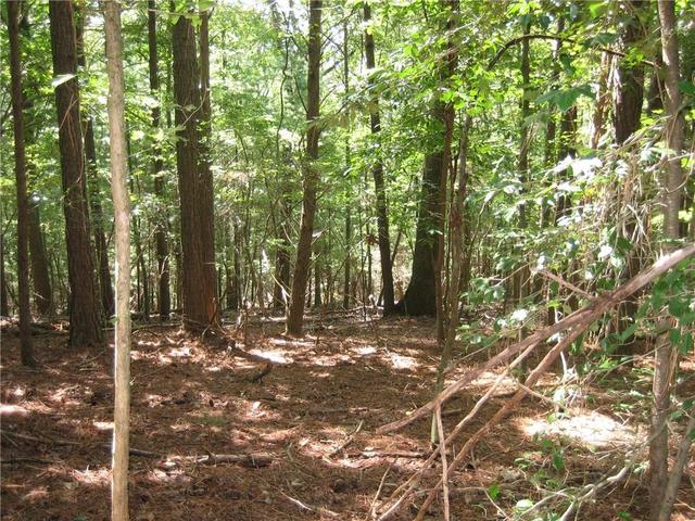 Lot 30 Lakeview Circle, East Ellijay, GA 30536