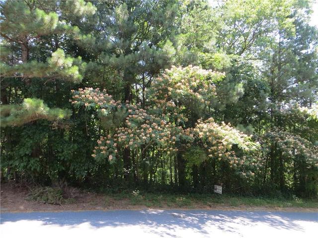 Lot 45 Rebels Run, Canton, GA 30115
