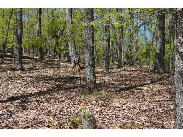 467 Bear Creek Apt 3525 DrJasper, GA 30143