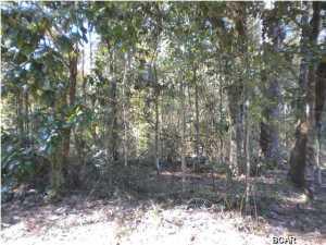 Lot 3 Lot 3 Appalachee Trail, Marianna, FL 32446