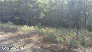 000 Lake Ridge Rd, Chipley, FL 32428