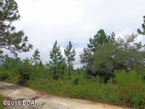 0 NW Pawnee Road #LOT 6, Altha, FL 32421