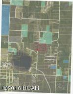 0 NW Lake Mckenzie Shrs, Altha, FL 32421