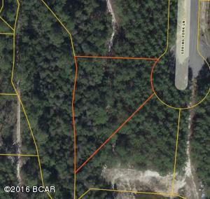 13205 Spring Fork Lane, Southport, FL 32409