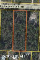 814 Skunk Valley Rd, Southport, FL 32409