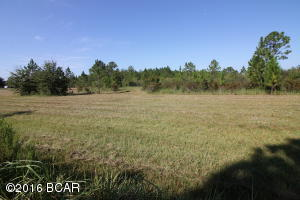 15709 Gainer Road, Youngstown, FL 32466