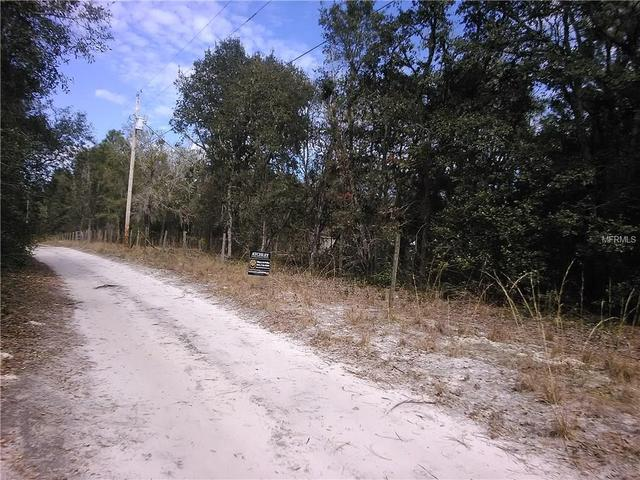 20891 NE 105th Ave, Fort Mc Coy, FL 32134