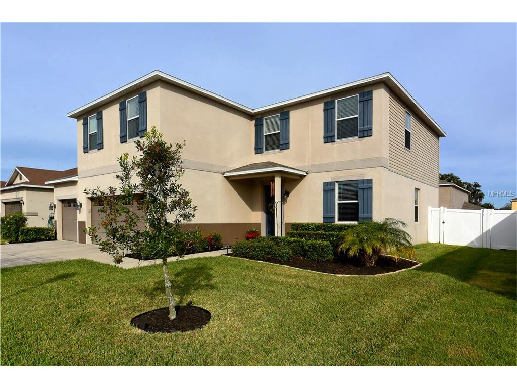 11116 Hartford Fern Dr, Riverview, FL
