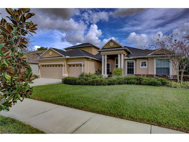 1815 Haven Bnd, Tampa, FL 33613