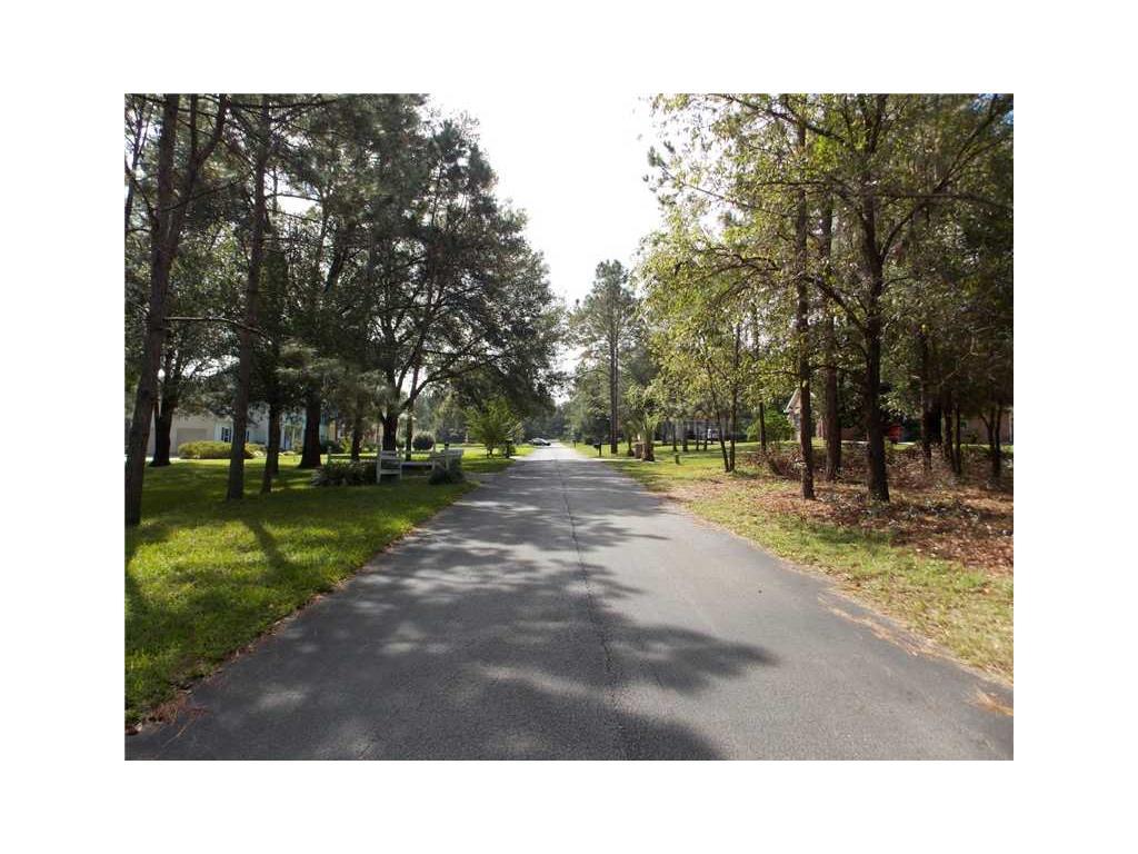Pine Leaf Lane, Dade City, FL 33525