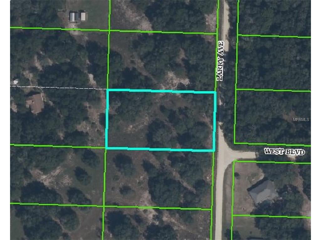 Larry Avenue, Webster, FL 33597