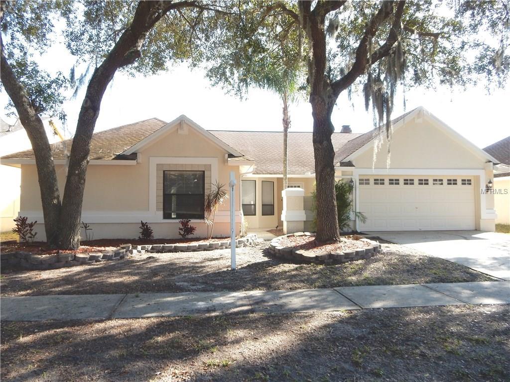 18328 Cypress Stand Cir, Tampa, FL