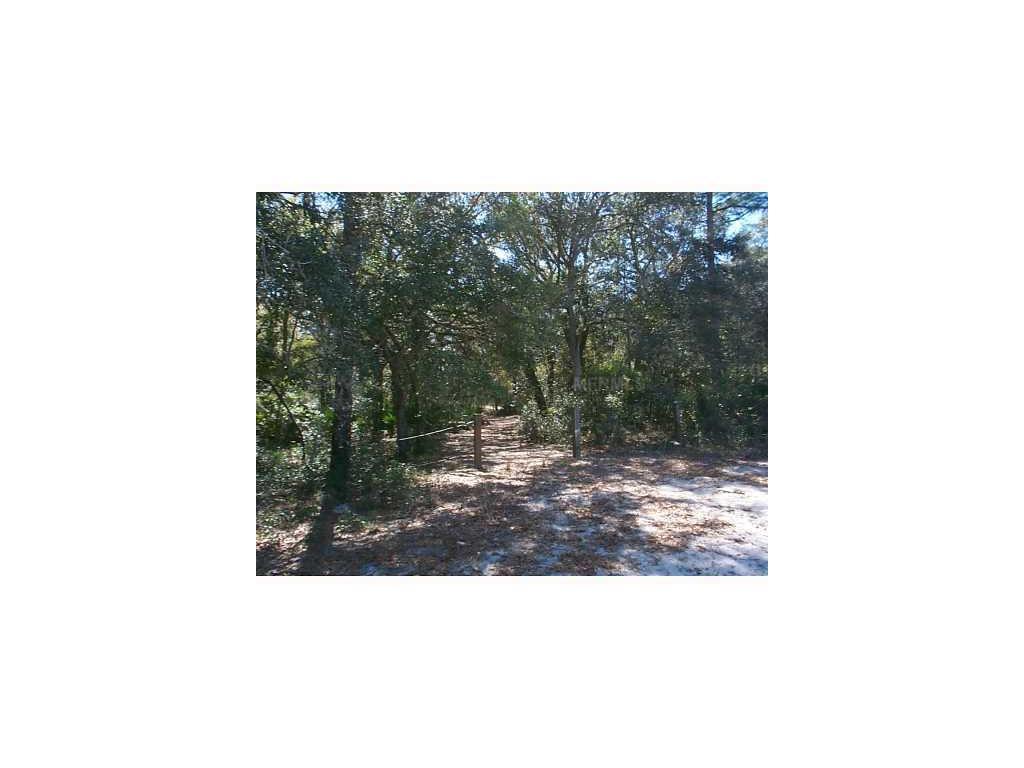 Burnsed Road, Pierson, FL 32180