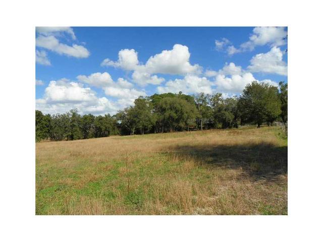 Us Hwy 27/441 & Eagles Nest Rd, Fruitland Park, FL 34731