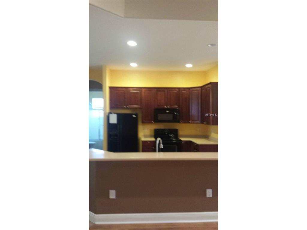 5337 Grove Manor, Lady Lake, FL 32159