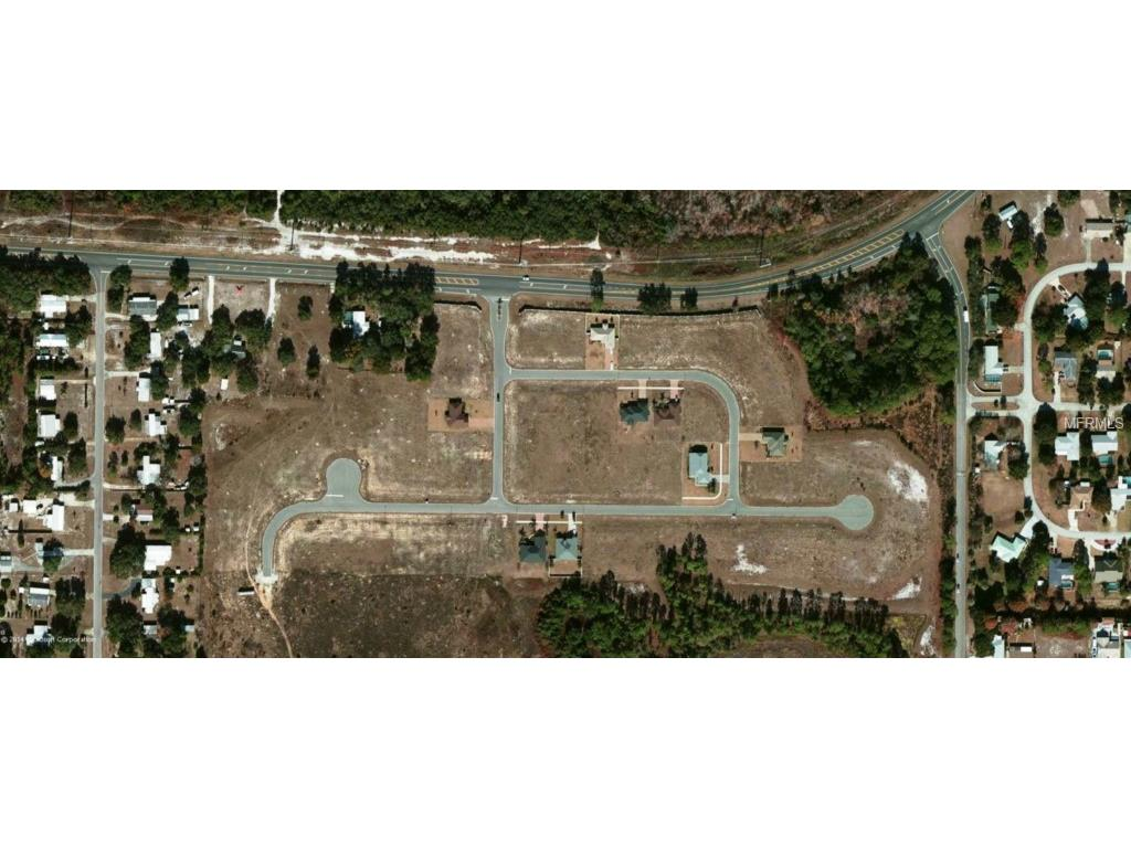 12125 Buttonbush Loop, Leesburg, FL