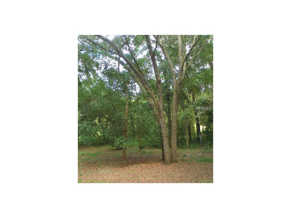 1515 Cr 466a Miller Boulevard, Fruitland Park, FL 34731