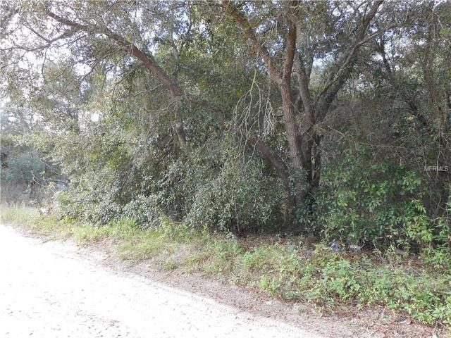 Palm St, Lady Lake, FL 32159